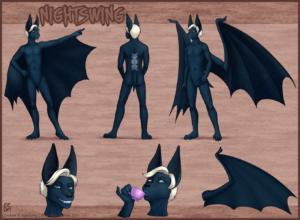 2014-07-29-nightswing_s